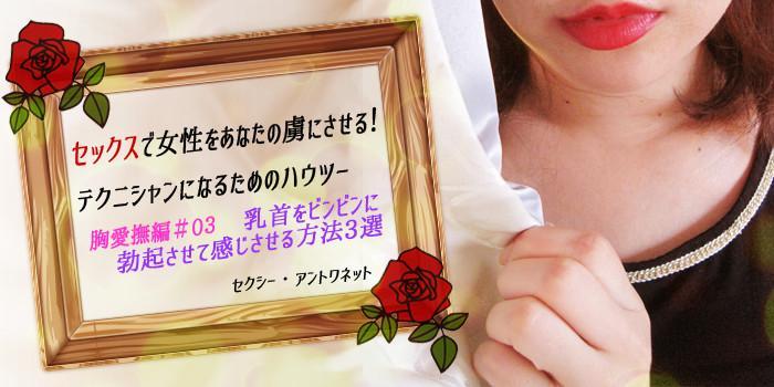 セックスで女性をあなたの虜にさせる!テクニシャンになるためのハウツー ~胸愛撫編#03~